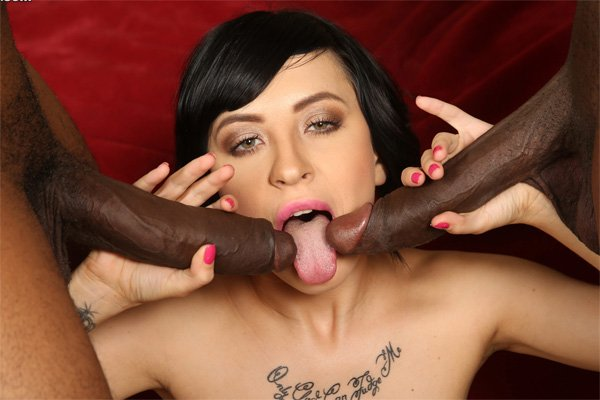 Newbie Sandra Luberc Has a Big Black Cock In Her Ass